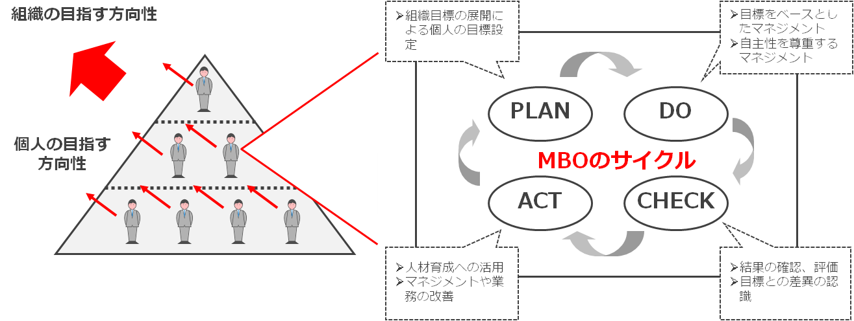 mbo_1